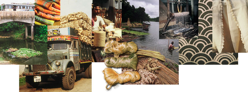 Jute-From-Bangladesh